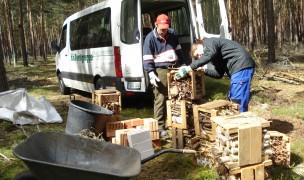 Ausladen der vielgestaltigen Innenausstattung für das Wildbienenhotel